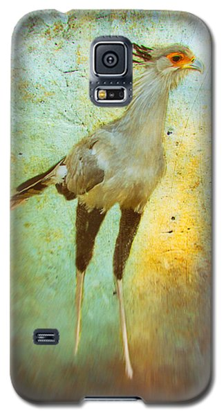 Galaxy S5 Case featuring the photograph Secretary by James Bethanis