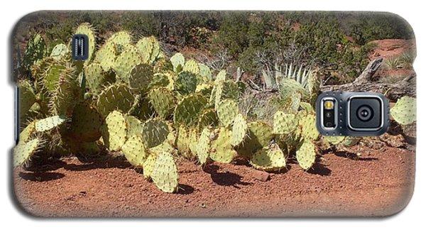 Galaxy S5 Case featuring the photograph Sedona Cacti by Philomena Zito