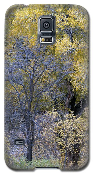 Sedona Fall Color Galaxy S5 Case