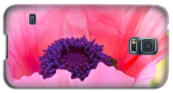 Seductive Poppy Galaxy S5 Case by Roselynne Broussard