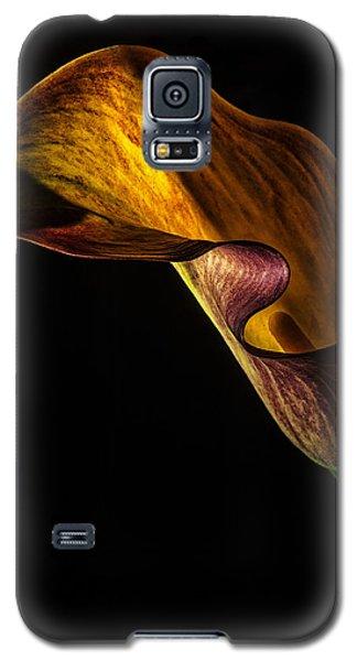 Seductress Galaxy S5 Case by Karen Slagle