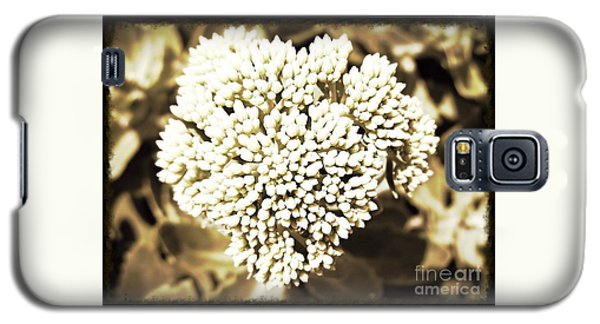 Sedum In The Heart Galaxy S5 Case by Kimberlee Baxter