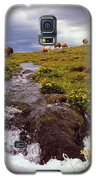 Galaxy S5 Case featuring the photograph See The Pretty Horses by Debra Kaye McKrill