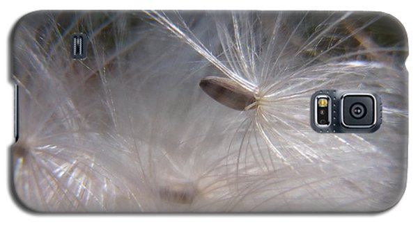 Galaxy S5 Case featuring the photograph Seed Of Life by Agnieszka Ledwon