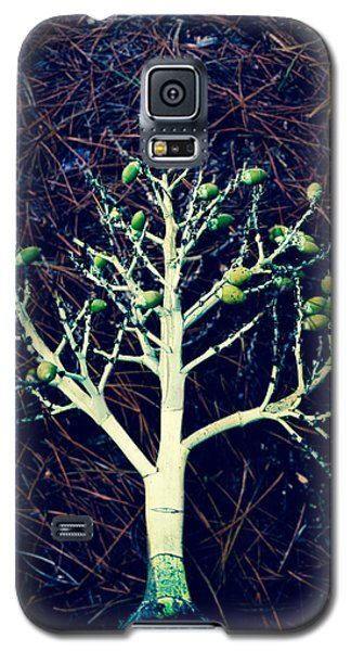 Seeded Tree's Galaxy S5 Case