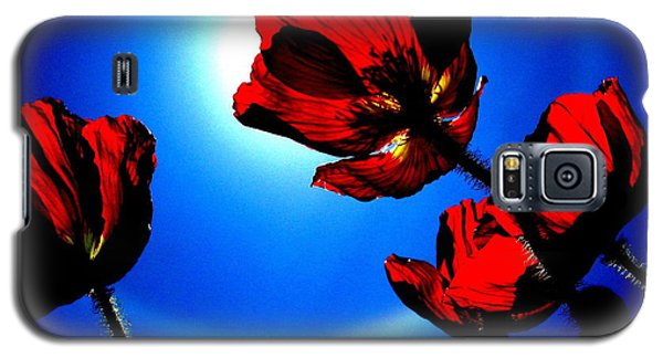 Seeking The Sun  Galaxy S5 Case