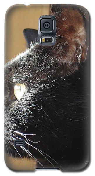 Galaxy S5 Case featuring the photograph Seesa by Kerri Mortenson