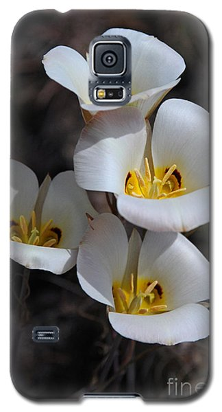 Sego Lily Galaxy S5 Case