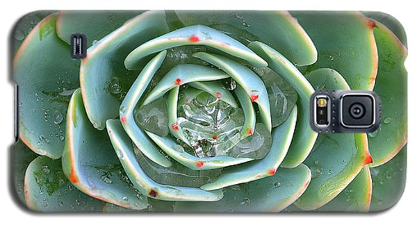 Sempervivum Tectorum Galaxy S5 Case