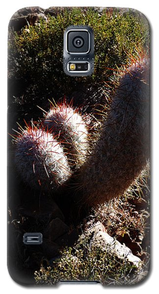 Senor Cacti Galaxy S5 Case
