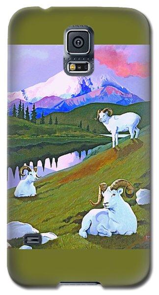 Sentinel Denali Galaxy S5 Case