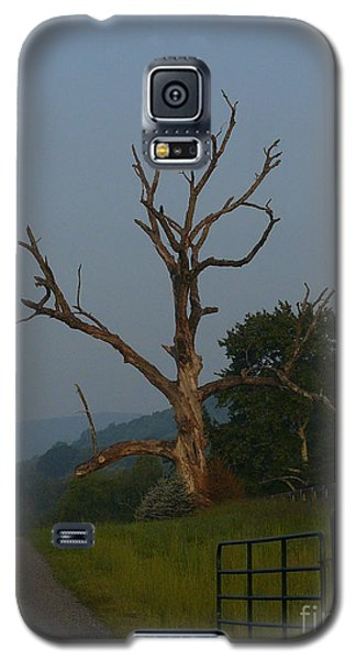 Galaxy S5 Case featuring the photograph Sentinel by Jane Ford