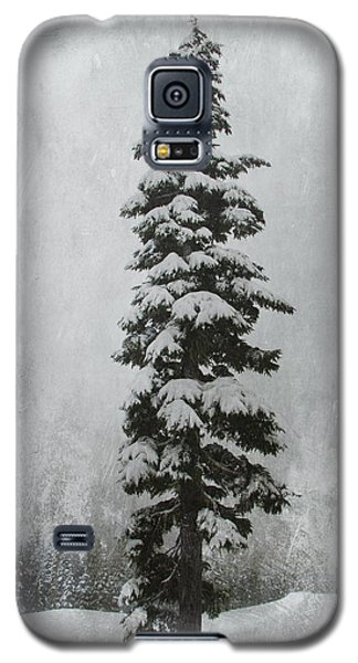 Sentinel Galaxy S5 Case by Marilyn Wilson