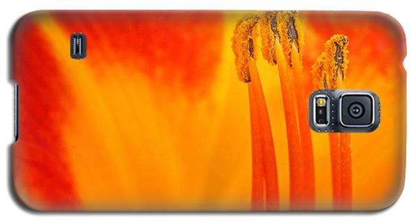Sentinels Galaxy S5 Case by Joan Herwig