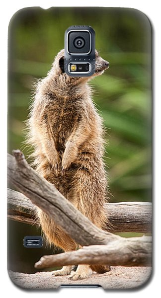 Sentry Duty Galaxy S5 Case