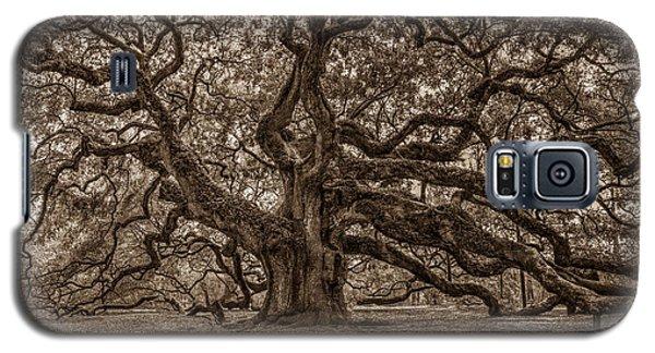 Sepia Angel Oak Galaxy S5 Case