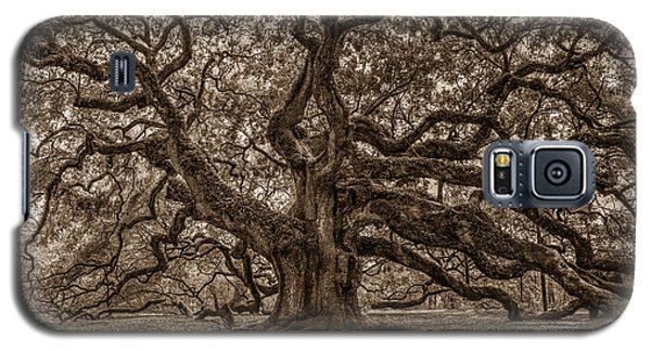 Sepia Angel Oak Galaxy S5 Case