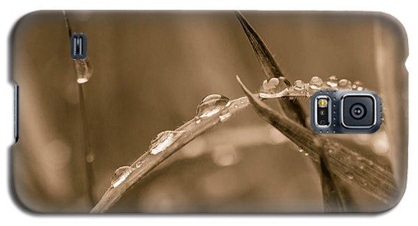 Sepia Dew Drops. Galaxy S5 Case