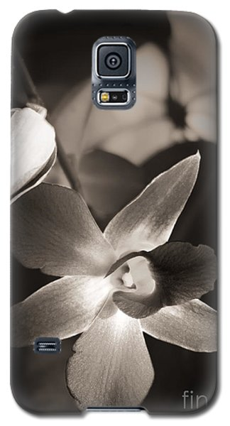 Galaxy S5 Case featuring the photograph Sepia Orchid by Ellen Cotton