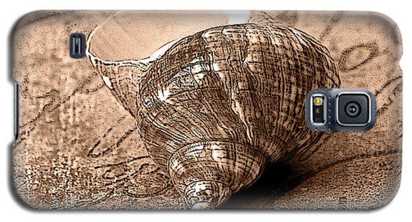 Sepia Seashell Galaxy S5 Case by Karen Stephenson