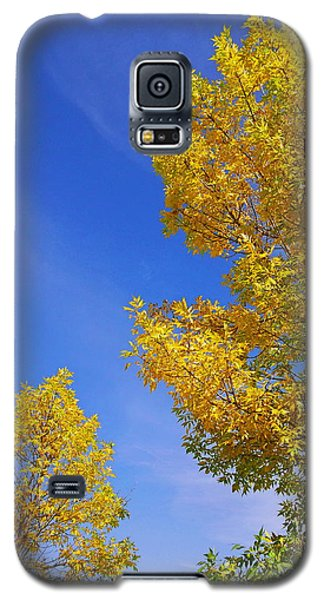 Galaxy S5 Case featuring the photograph September Sky by Debi Dmytryshyn