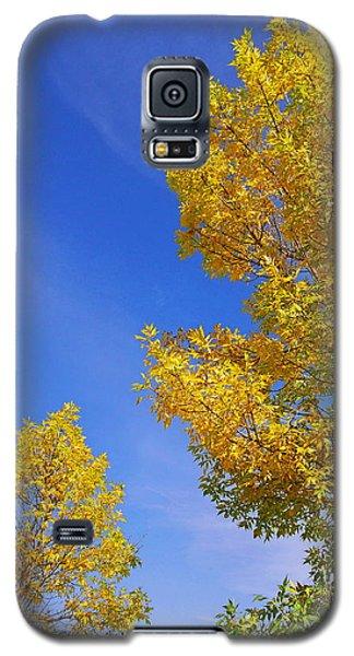 September Sky Galaxy S5 Case by Debi Dmytryshyn
