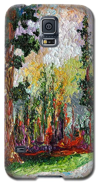 Sequoia Path National Parks  Galaxy S5 Case by Ginette Callaway