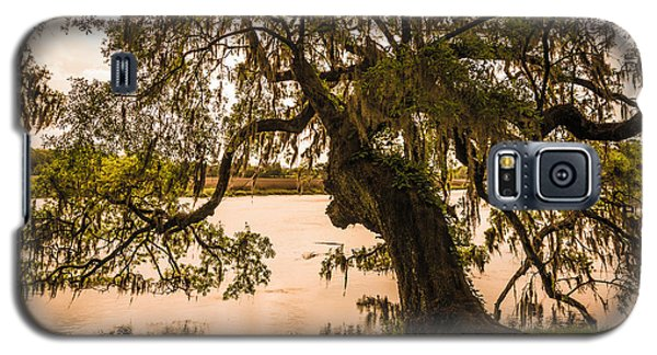 Galaxy S5 Case featuring the photograph Seren Lowcountry by Serge Skiba