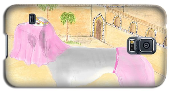 Galaxy S5 Case featuring the painting Serena All Set For Arabian Nights by Stephanie Grant