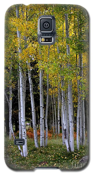 Galaxy S5 Case featuring the photograph Serendipitous by Ruth Jolly