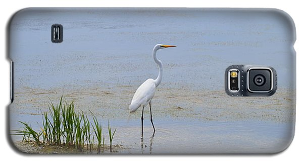 Galaxy S5 Case featuring the photograph Serene by Judith Morris