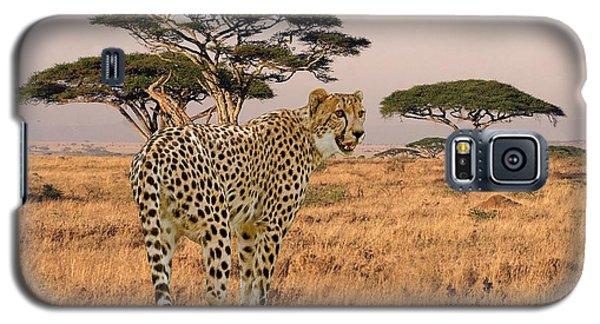 Serengeti Cat Galaxy S5 Case