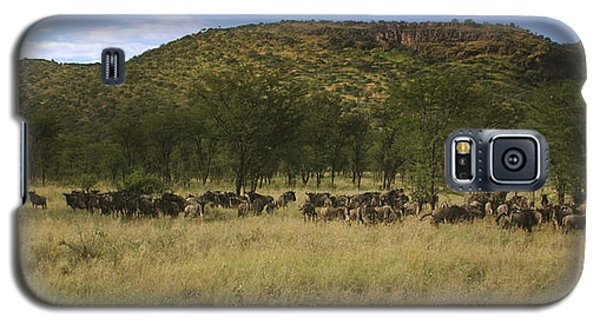 Galaxy S5 Case featuring the photograph Serengeti by Joseph G Holland