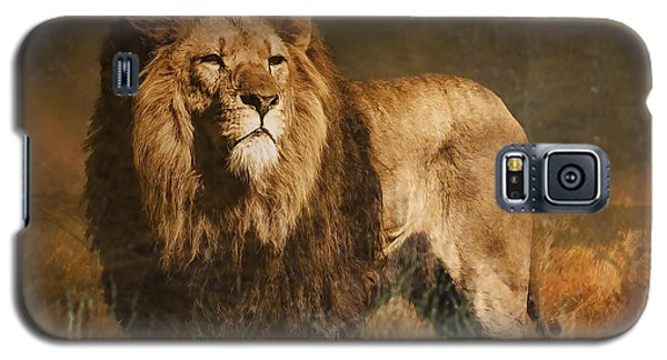 Galaxy S5 Case featuring the photograph Serengeti Sunset by Brian Tarr