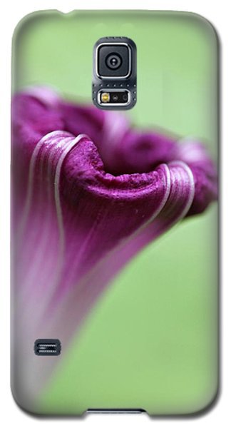 Galaxy S5 Case featuring the photograph Serenity by Michaela Preston