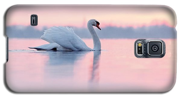 Serenity   Mute Swan At Sunset Galaxy S5 Case by Roeselien Raimond