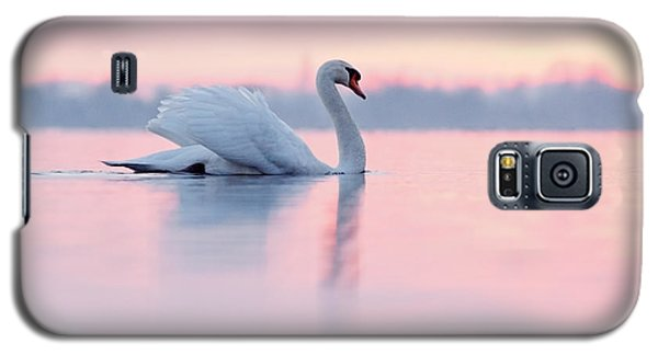 Swan Galaxy S5 Case - Serenity   Mute Swan At Sunset by Roeselien Raimond