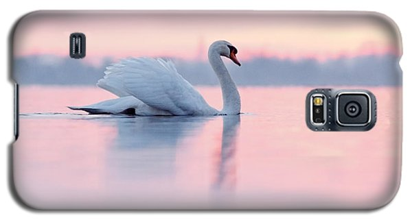 Sunset Galaxy S5 Case - Serenity   Mute Swan At Sunset by Roeselien Raimond