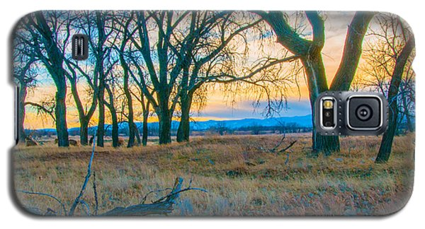 Setting Sun At Rocky Mountain Arsenal_1 Galaxy S5 Case by Tom Potter