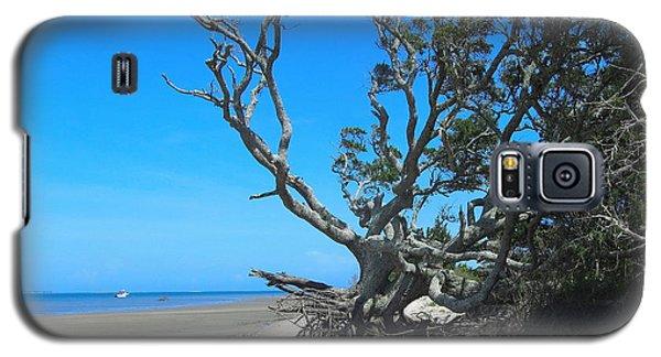 Shackleford Banks Tree 2 Galaxy S5 Case