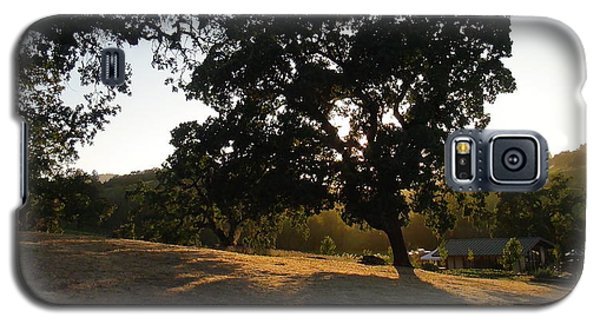 Shade Tree  Galaxy S5 Case