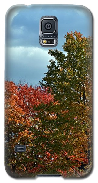 Galaxy S5 Case featuring the photograph Shaded by Judy Wolinsky
