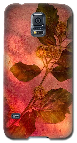 Shades Of Autumn Galaxy S5 Case