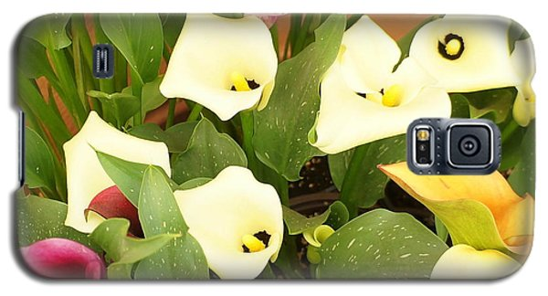 Shades Of Calla Lilies Galaxy S5 Case