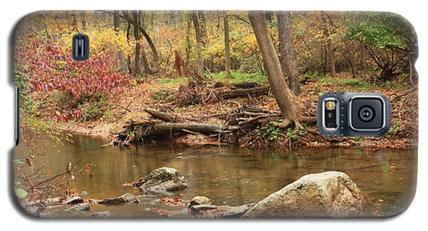 Galaxy S5 Case featuring the photograph Shades Of Fall In Ridley Park by Patrice Zinck