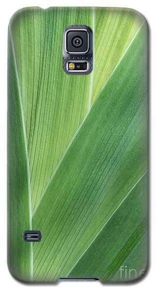 Galaxy S5 Case featuring the photograph Shades Of Green #2 by Judy Whitton