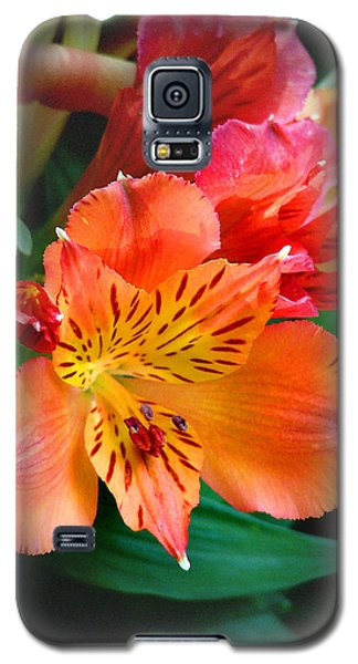 Shades Of Orange Galaxy S5 Case