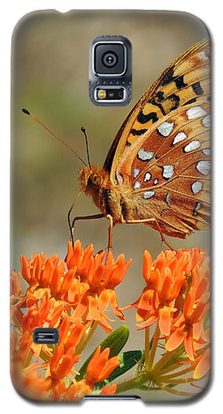 Shades Of Orange Galaxy S5 Case