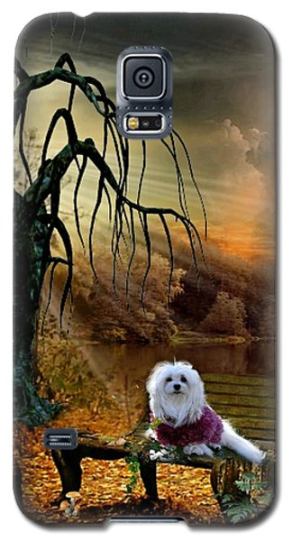 Galaxy S5 Case featuring the photograph Shades Of The Fall  by Morag Bates