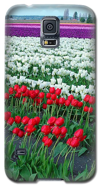 Shades Of Tulips Galaxy S5 Case